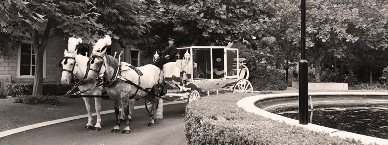 Perth-Horse-&-Carriage-Peel-Manor