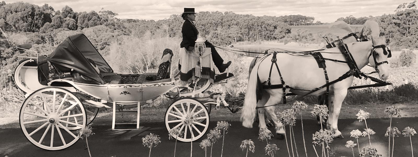 Perth-Horse-&-Carriage-Roadside